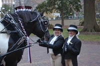 Arrivals In Elegance Wedding Carriage Horse and Buggy Rides