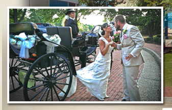 Lovely bride and horse carriage at wedding