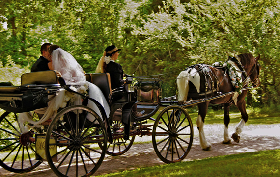 Romantic carriage ride makes unforgettable photographs at your wedding