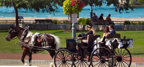 Wedding couple in horse and buggy at Yorktown waterfront